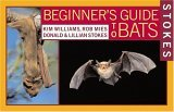 Beginners Guide to Bats