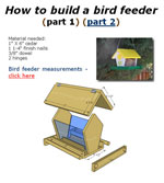 How to Build a Bird Feeder Photo