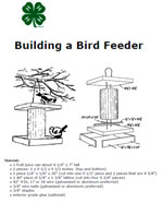 Building Bird Feeder Photo
