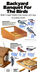 Diy Bird Feeder Design