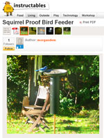 Squirrel Proof Bird Feeder Image