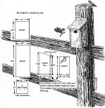 Bluebird House Plans Build a Bluebird House