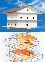 Build a Purple Martin House