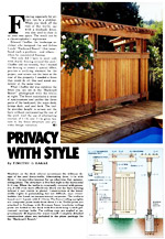 Privacy with Style Picture