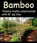 12 free tomato trellis designs